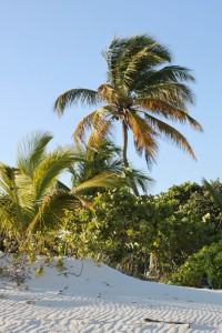 Anguilla 4
