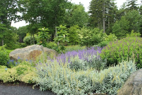 Scene from the Coastal Maine Botanical Gardens in Boothbay, Maine.